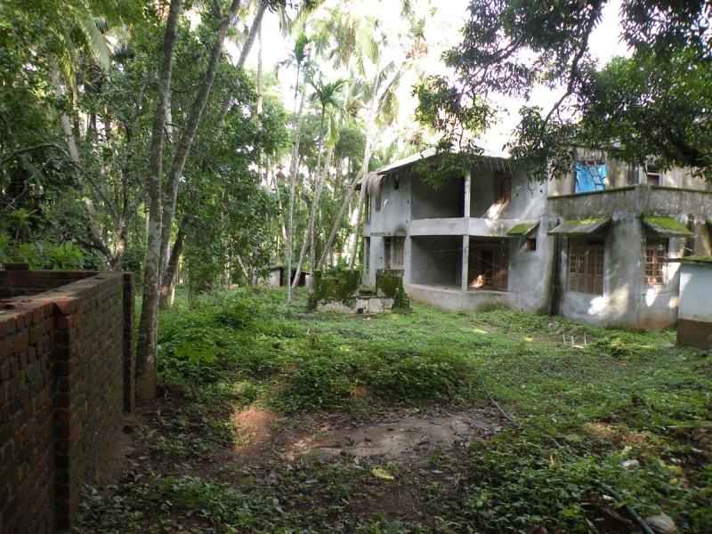 Nalukettu model house for sale