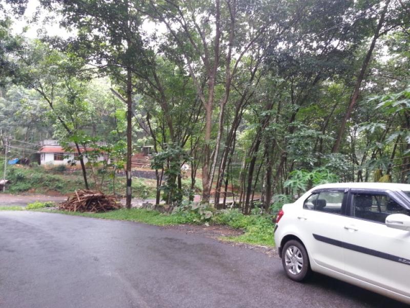 Rubber Estate For Sale Athikkayam Ranni Pathanamthitta